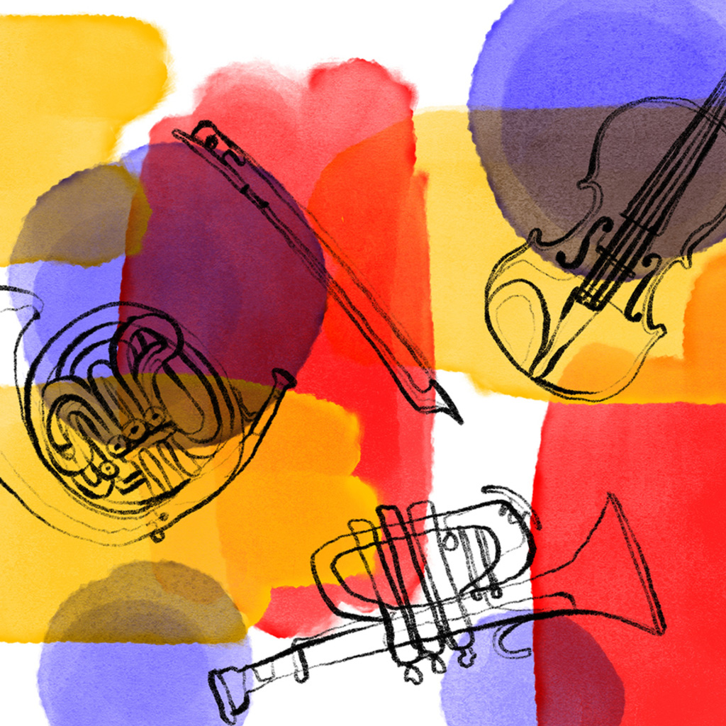Tiroler Kammerorchester Innstrumenti